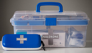 Facility Overdose Response Box Sites