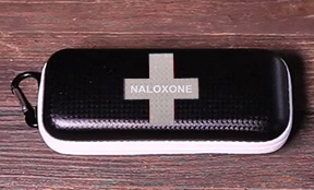 Take Home Naloxone Sites